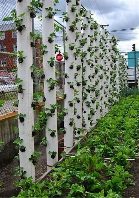 vertical planting 20 cool vertical gardening ideas hative