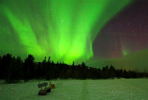 lights in ca tracking the northern lights in yukon canada
