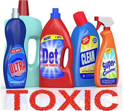 toxic household cleaners pet proofing your home pet safe home garden pets