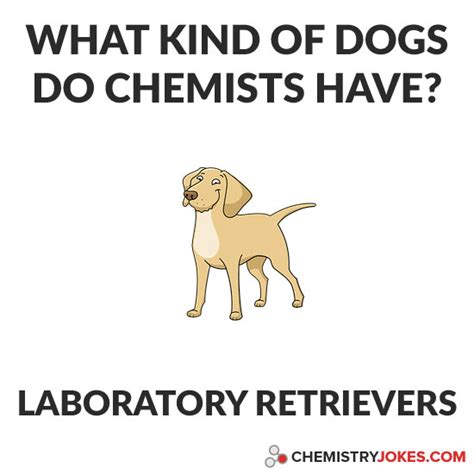 Chemistry Dog Meme - what kind of dogs do chemists have chemistry jokes