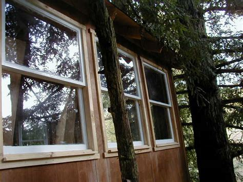 tree house windows corbin s treehouse a real tree house in santa cruz california by corbin dunn