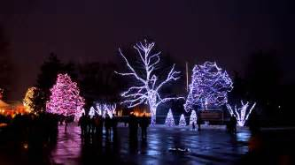toledo zoo lights before hours toledo zoo lights before 2012 lights