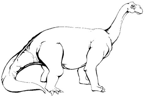 camarasaurus dinosaur coloring pages and facts