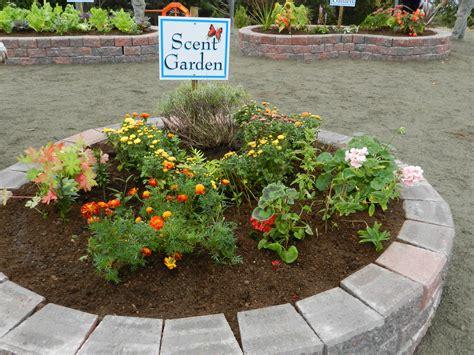 Sensory Garden Ideas 1000 Images About Sensory Garden Ideas On Pinterest Sensory Garden Autism And Special Needs