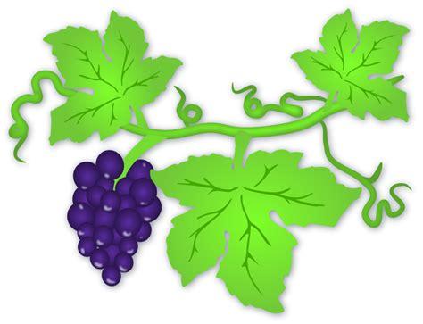 printable vine leaves free printable grape leaves clipart best