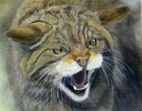 bob ross paintings of animals pin bob ross paintings gallery artwork pictures on