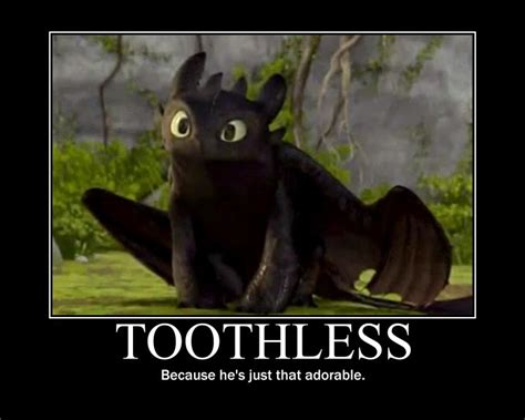 Toothless Meme - rainy days movie time how to train your dragon 2