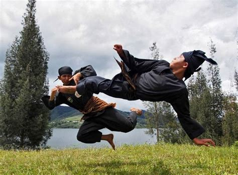 martial arts silat harimau the deadly beauty pencak silat indonesian deadly martial arts part 1