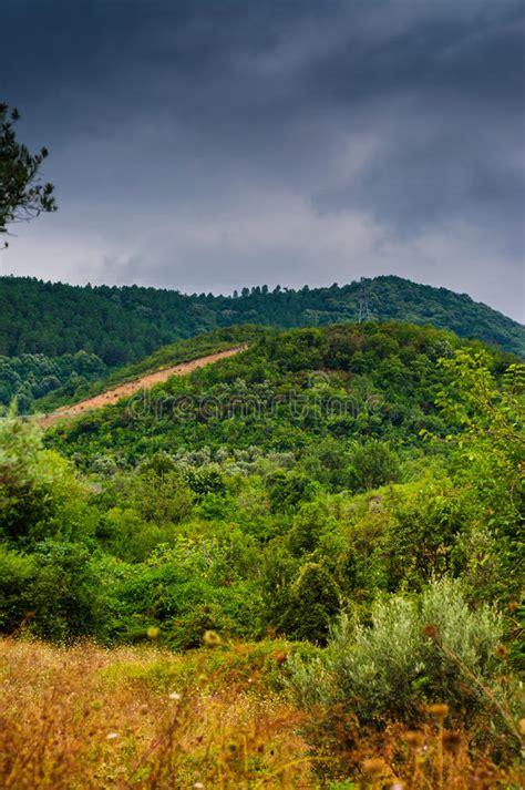 Landscape Photography Daytime Rainy Pastoral Landscape Daytime Stock Photo Image 58351586