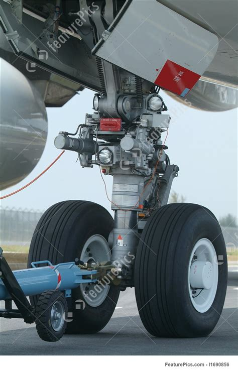 nose wheel  airbus  photo