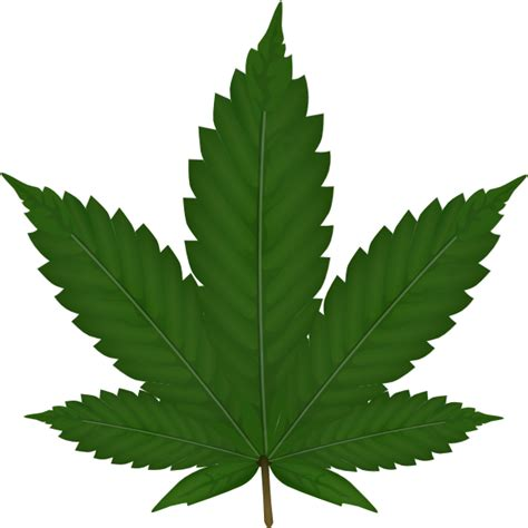 cannabis leaf clip art at clker com vector clip art