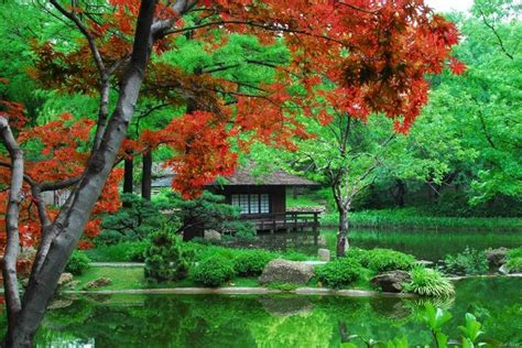 Pin By Shawna Joiner On Bucket List Texas Style Fort Worth Botanical Gardens Japanese Garden