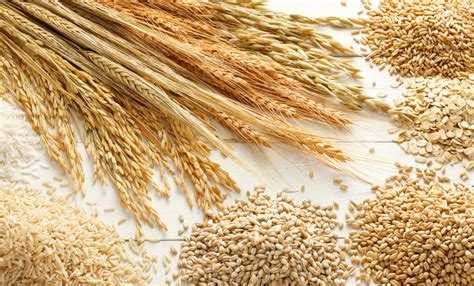 whole grains images canadian grain inc exporting the top quality canadian