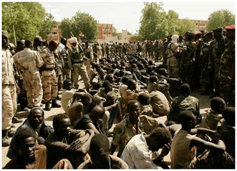 boko haram the history of an jihadist movement princeton studies in muslim politics books cameroon government sentence 89 boko haram members to