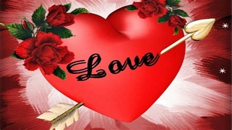 red rose love wallpapers wallpaper cave red rose love wallpapers wallpaper cave