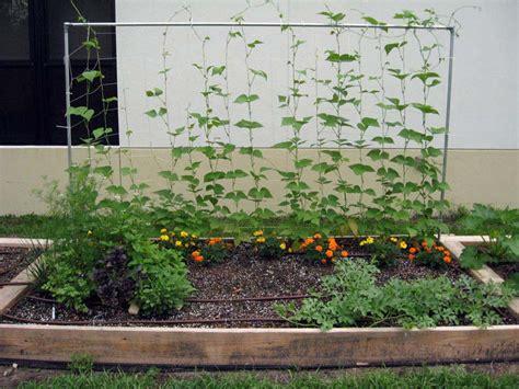Vegetable Garden Supplies Vegetable Gardening With Raised Beds Quiet Corner