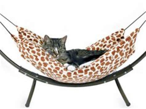 amaca per gatti cucce per gatti come scegliere