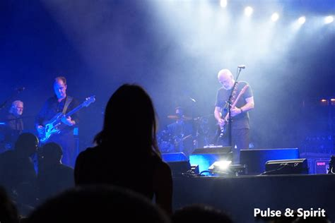 comfortably numb orchestra comfortably numb orchestra david gilmour david bowie