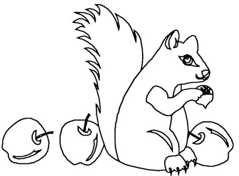 eaten apple coloring page squirrel eat apple coloring pages