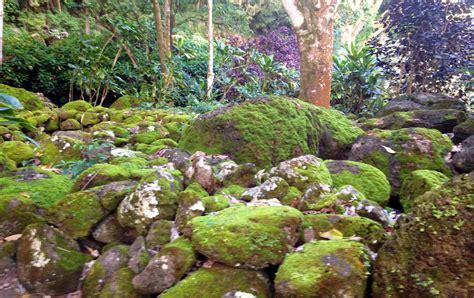 Waimea Botanical Garden Waimea Valley Botanical Garden Gardens