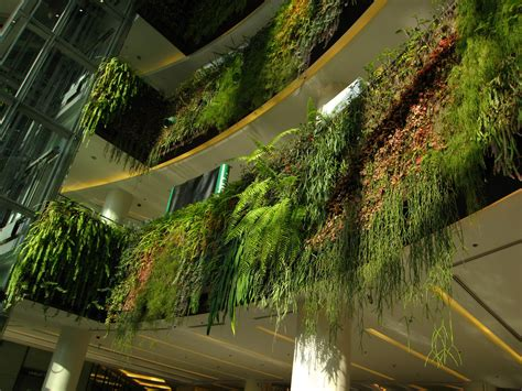 Hanging Vertical Garden Siam Paragon Hanging Fences Detail One Year After