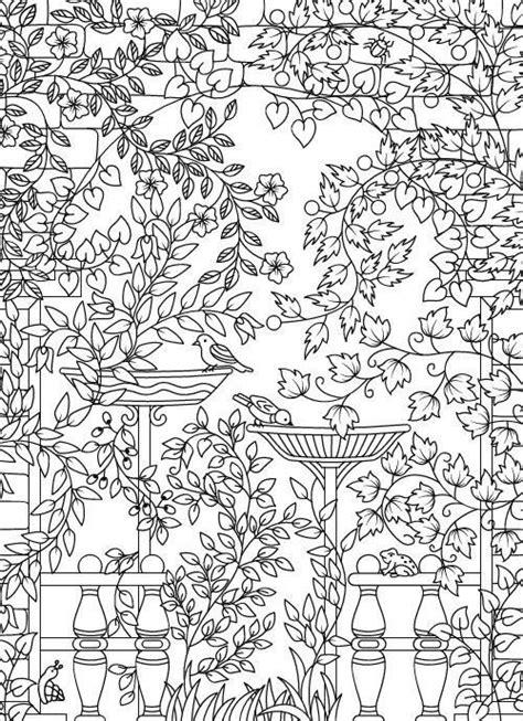 Amazon.com: Hidden Garden: An Adult Coloring Book with