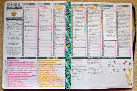 Home Organization Binder what i learned this week puppies in my passion planner
