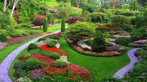 garden design services near me garden design service lawn