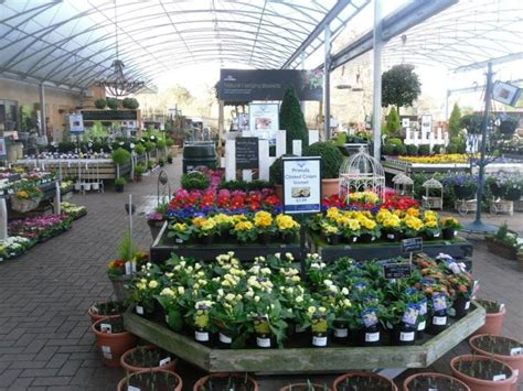 garden centre display benches break the plant bench mold 10 easy ways to improve your