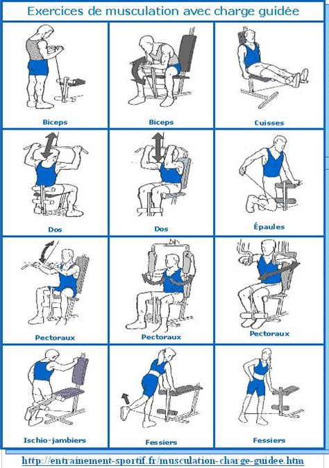 17 best ideas about appareil musculation on