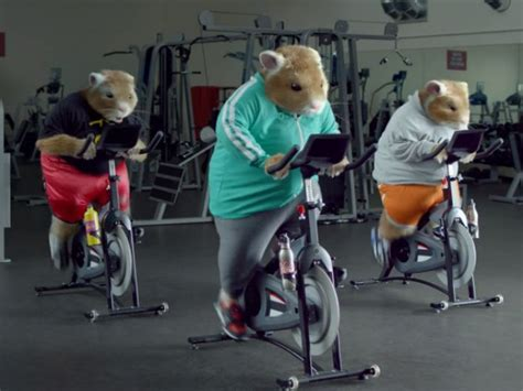 Kia Soul Hamster Commercial 2009 Kia S Hamsters Return In Totally Transformed 2014 Soul