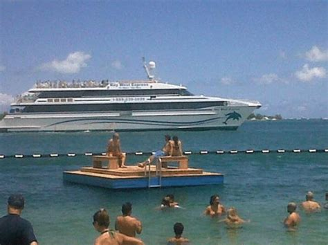 key west boat marco island high speed catamarran picture of key west express