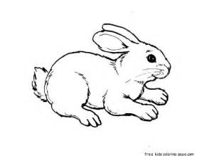 printable kids coloring pages animal rabbit free printable coloring pages kids free