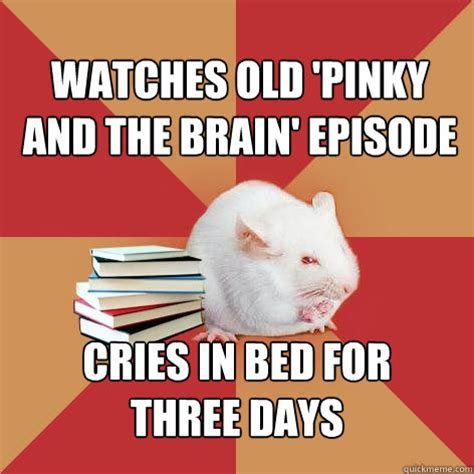 Pinky Meme - watches old pinky and the brain episode cries in bed for