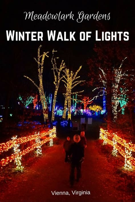 meadowlark gardens winter walk of lights is magical for