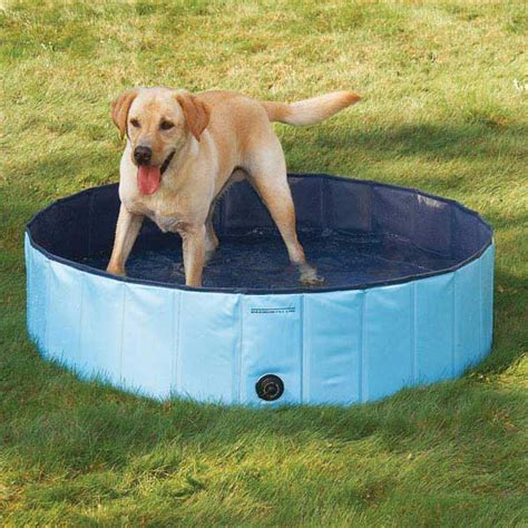 puppy pool guardian gear pool tough pvc folds for storage 3 sizes available