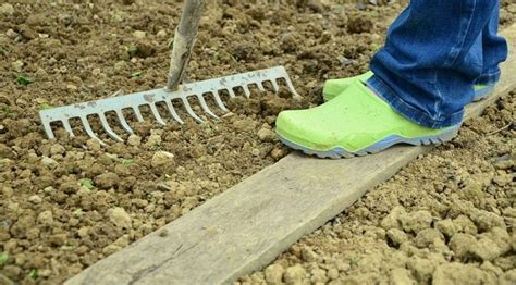 prepare soil for vegetable garden how to prepare soil for vegetable garden balcony garden web