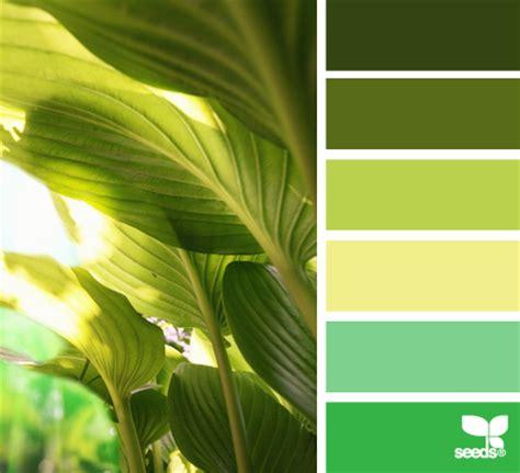 летние цветовые палитры ivoree