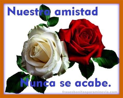 imagenes de rosas hermosas con frases de amistad frases bonitas para mi novia