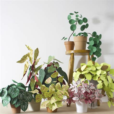Paper From Plants - diy pretty and carefree paper plants gardenista