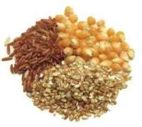 citigroup raises estimates for corn, wheat, soybeans (corn
