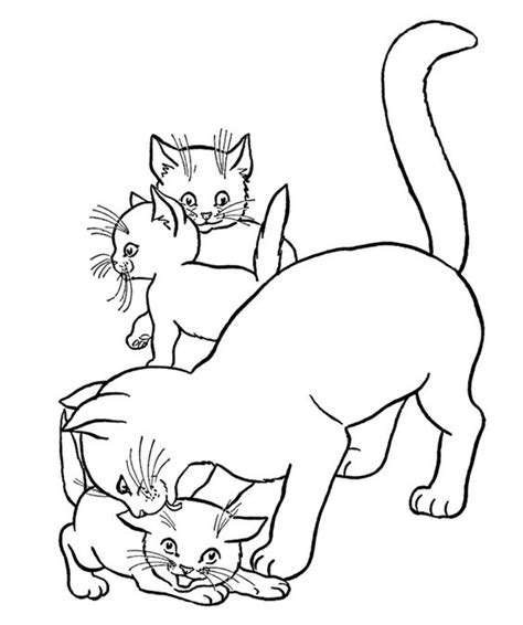 mother cat coloring page mother cats loved his son coloring page coloring book