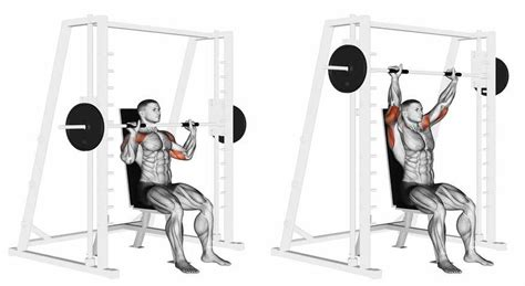 smith machine shoulder press bodybuilding wizard