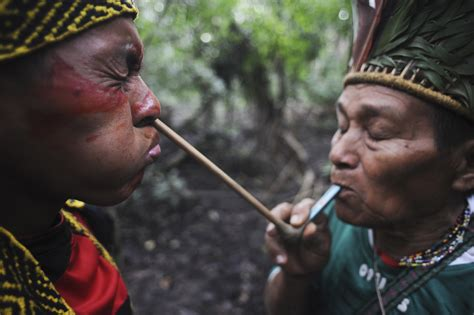 amazon tribe struggles to survive in the amazon