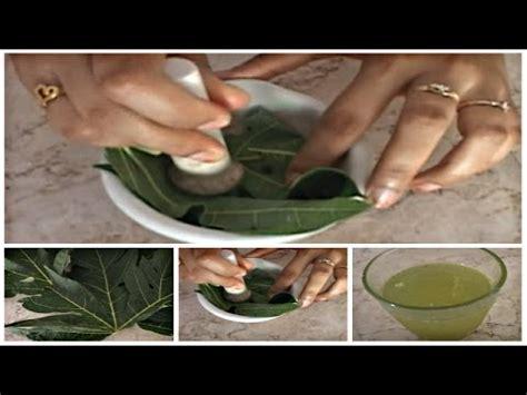 cara membuat obat oralit obat nyeri haid cara membuat ramuan obat herbal daun