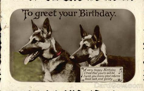 german shepherd  birthday  dogs postcard