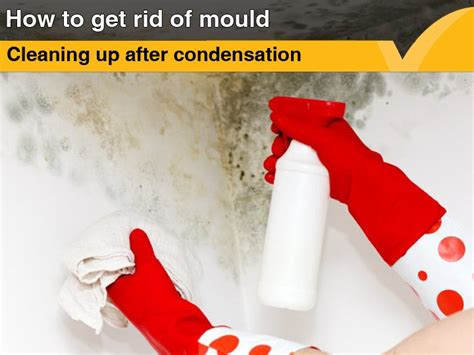 how to get rid of moisture in the basement read book condensation property care pdf read book