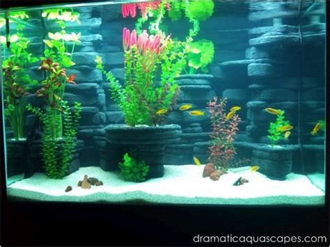 dramatic aquascapes dramatic aquascapes diy aquarium background kodey