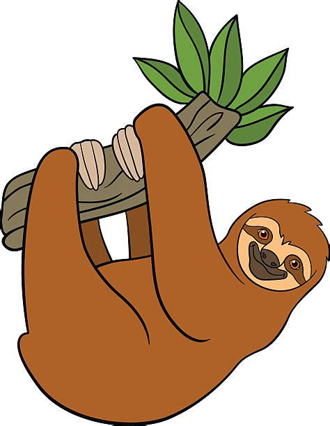 sloth clipart royalty free baby sloth clip vector images