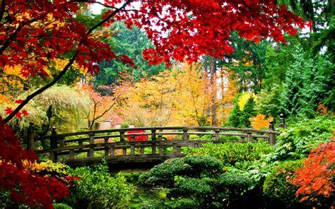 ver imagenes otoño paisajes de oto 241 o para fondos de pantalla oto 241 o wallpapers
